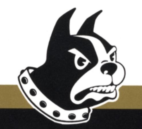 Mascot1990s