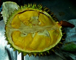 The durian magic inside
