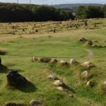 Viking burial ground.